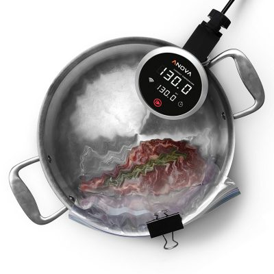 Best Sous Vide Cooker